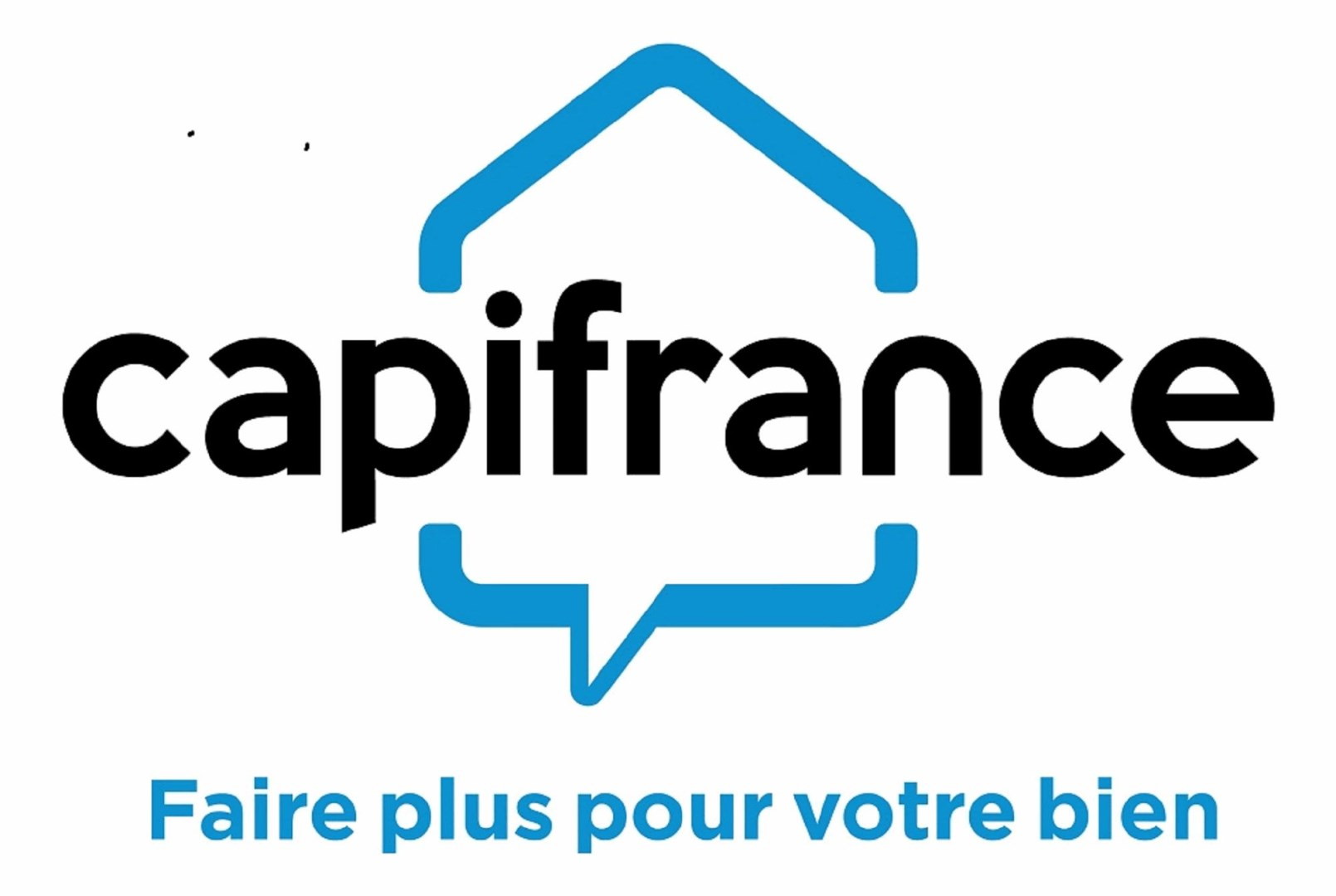 Real estate agency SAUNIER Christian - CAPI France in BLAN