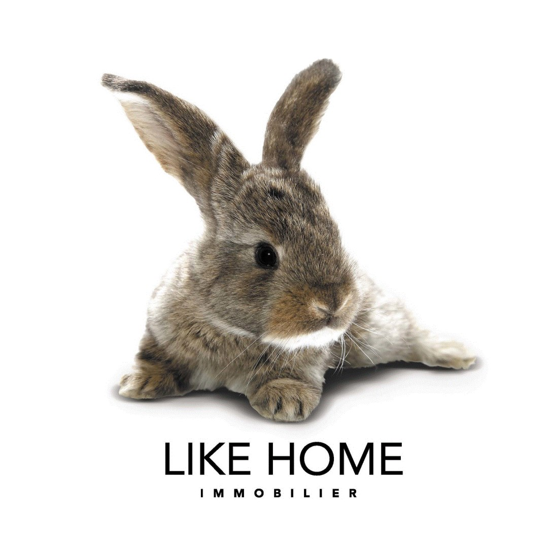 Like home gestion agence immobili re lyon 6eme for Agence immobiliere 69006