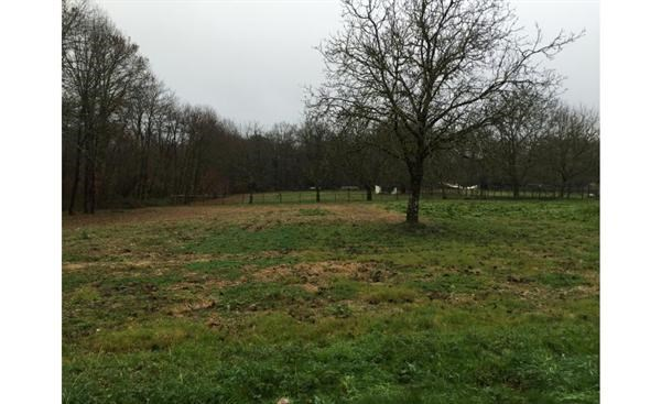 Terrain  de 1000 m² Annesse-et-Beaulieu par MAISONS OMEGA