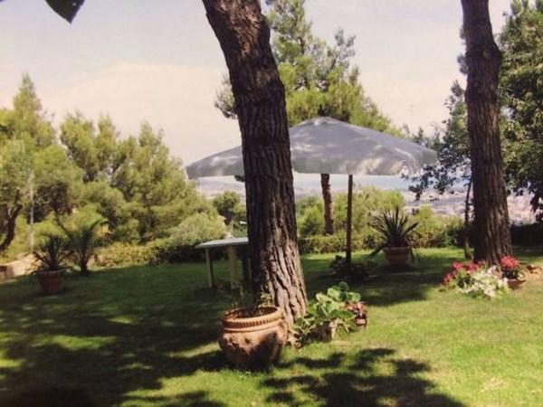 Vente  600m² Montesilvano