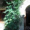 Maison / villa maison 4 pièces Gabian - Photo 15