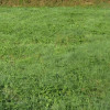 Terrain terrain constructible L Eguille - Photo 2