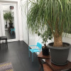 Престижная продажа - дом 8 комнаты - 300 m2 - Vichy - Photo