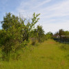Revenda - Terreno - 1269 m2 - Mont près Chambord - Photo