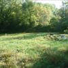 Terrain terrain à bâtir St Seurin sur l Isle - Photo 1
