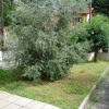 Vendita - Casa 3 stanze  - 75 m2 - Nice - Photo