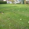 Terrain terrain 428 m² Crepy en Valois - Photo 2