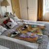 Maison / villa maison 6 pièces Saint Paul de Vence - Photo 15