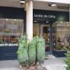 Local commercial vente de murs occupés / 8,4% de rendement Poissy - Photo 1