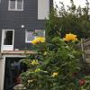 Maison / villa maison 6 pièces Loos - Photo 1