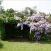 Maison / villa maison ancienne Flavigny sur Ozerain - Photo 6