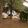 Verkauf - Grundstück - 370 m2 - Sidon - Photo