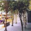 Vente de prestige - Loft 6 pièces - 300 m2 - Paris 10ème