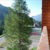 Appartement studio coin montagne La Foux d Allos - Photo 2