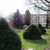 Appartement 3 pièces Bagneux - Photo 1