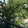 Appartement bois d'arcy - appartement 40.3 m² Bois d Arcy - Photo 3