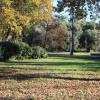 Maison / villa maison / villa 4 pièces Lege Cap Ferret - Photo 1