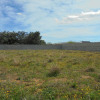 Terrain terrain 546 m² Paulhan - Photo 1