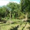 Terrain terrain à bâtir Bourdeau - Photo 1