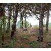 Vente - Terrain - 800 m2 - Alella - Photo