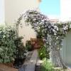 Maison / villa maison montelimar 4 pièces 88 m² Montelimar - Photo 8