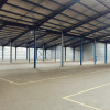 Vermietung - Lager - 2880 m2 - Montauban