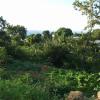 Terrain terrain 500 m² Bois de Nefles - Photo 2