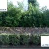 Vente - Terrain - 572 m2 - Breuillet