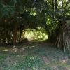Terrain terrain à bâtir Bourdeau - Photo 2