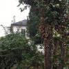 Maison / villa maison bourgeoise Argenteuil - Photo 8
