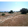 Vente - Terrain - 25,2795 ha - La Savina - Photo