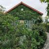 Viager - Maison / Villa 4 pièces - 75 m2 - Villiers sur Marne