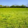 Verkauf - Grundstück - 1000 m2 - Bizonnes