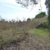 Terrain terrain 1265 m² Mouans Sartoux - Photo 3