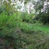 Vente - Terrain - 3422 m2 - Bazoches sur Guyonne