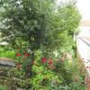 Vente - Appartement 3 pièces - 44,5 m2 - Bois Colombes - Photo