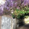 Maison / villa propriété 6 pièces Villiers Saint Frederic - Photo 8