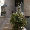 Vente - Maison ancienne 10 pièces - 350 m2 - Crespières - A vendre ancien corps de ferme restaure - Photo