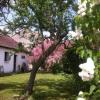 Maison / villa maison individuelle Thionville - Photo 2