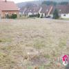 Revenda - Terreno - 662 m2 - Wimmenau - Photo