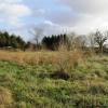 Terrain terrain 6065 m² Clairefontaine en Yvelines - Photo 2