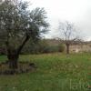 Terrain terrain 522 m² Caux - Photo 1