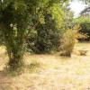 Terrain terrain constructible Bessancourt - Photo 1