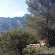 Terrain 1700 m² Roquebrune-sur-Argens (83520)