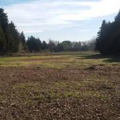 Terrain 302 m² Montfavet (84140)
