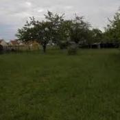 Terrain 1050 m² Lorges (41370)