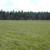 Terrain 1247 m² Hourtin (33990)