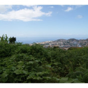 Funchal,