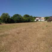 Terrain 460 m² Montfort-sur-Argens (83570)