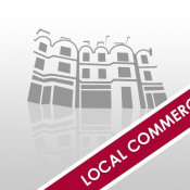Vente local commercial St Francois